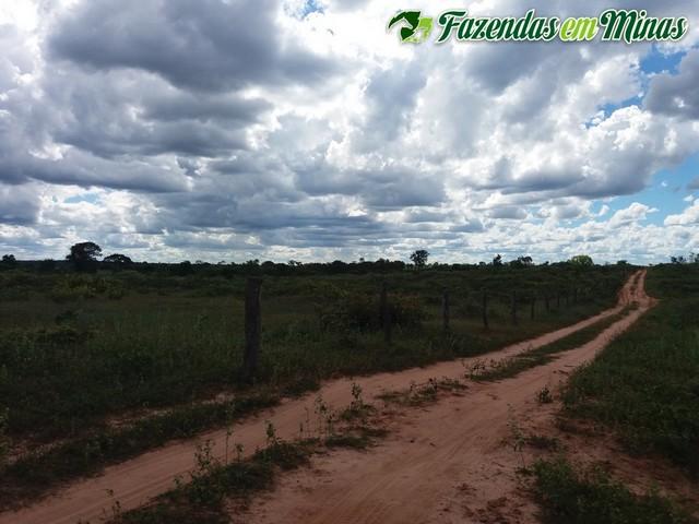 Fazenda para pecuária e reflorestamento